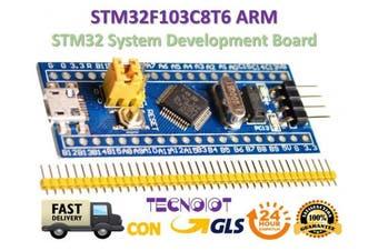 TECNOIOT STM32F103C8T6 ARM STM32 Minimum System Development Board Module for Arduino