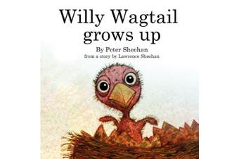 Willy Wagtail Grows Up