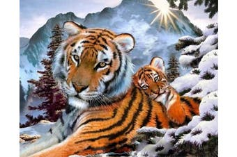(No Frame, Tigers) - ABEUTY DIY Paint by Numbers for Adults Beginner - Tigers Snow Sunrise 41cm x 50cm Number Painting Anti Stress Toys (No Frame)