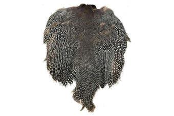 American Feathers Guinea Fowl Skin #1 Grade