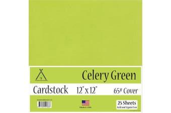 (30cm  x 30cm  - 25 Sheets) - Celery Green Cardstock - 30cm x 30cm - 29kg Cover - 25 Sheets