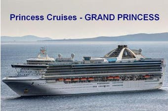 AFM Cruise Ship Fridge Magnet - Princess Cruises - Grand Princess 3½ x 2½ inches Jumbo