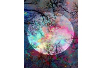 5D Diamond Painting by Number Kit, Bright Moon Full Drill Embroidery Cross Stitch Picture Supplies Arts Craft Wall Sticker Decor 30cm x 40cm