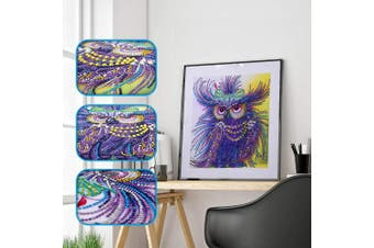 (Owl 1) - Amersin DIY 5D Special Shaped Diamond Painting by Number Kits, Full Drill Rhinestone Embroidery Cross Stitch Pictures for Christmas Home Decor (Owl 1)