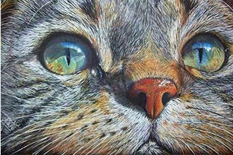 (Wise Cat) - 5D Artist Painting Kit - DIY Cross Stitch Kit (Size: 30cm x 41cm ) Great Designs, Diamond Embroidery Kit for Art & Craft, Living Room Wall Decor, Home Decor (Wise Cat)