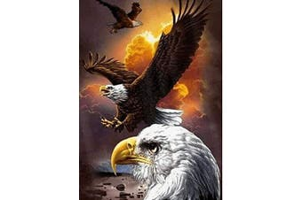 (Regal Eagle) - 5D Artist Painting Kit - DIY Cross Stitch Kit (Size: 30cm x 41cm ) Great Designs, Diamond Embroidery Kit for Art & Craft, Living Room Wall Decor, Home Decor (Regal Eagle)
