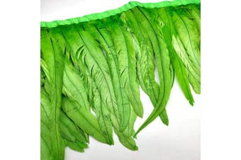 (Fruit green) - Natural Rooster Tail Feathers Fringe Trim (Fruit Green)