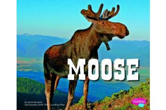 Moose (Pebble Plus: North American Animals)