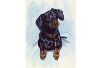 "Full Square Diamond 5D DIY Diamond Painting""Dog Dachshund"" Embroidery Cross Stitch Rhinestone Mosaic Painting Home Decor(24x34cm)"