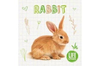 Rabbit (Life Cycles)