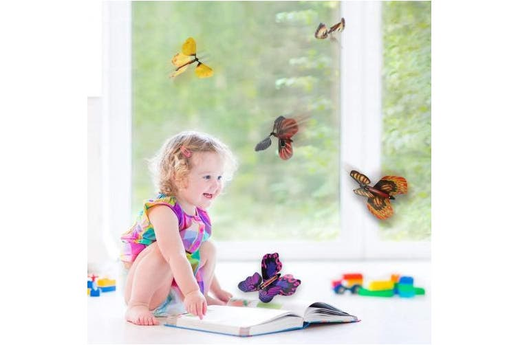 Dick Smith | (1-5pcs) - BFY Magic Flying Butterfly Wind Up Toys for Card,  Gag Gifts for Kids Great Surprise Colourful Butterfly in Book Greeting Card  Books for Wedding Party (5 Pcs) |