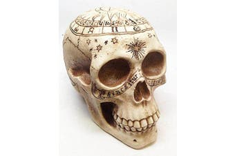 SOLAR CARTOGRAPH ASTROLOGY SKULL RELIC SCULPTURE RESIN FIGURINE