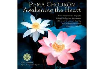 Pema Chodron 2020 Wall Calendar: Awakening the Heart