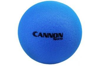 (22cm , Blue) - CSI Cannon Sports Uncoated Foam Balls
