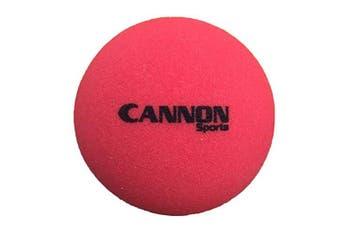 (22cm , Red) - CSI Cannon Sports Uncoated Foam Balls
