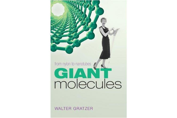 Giant Molecules: From Nylon to Nanotubes
