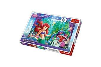 Disney Princess Trefl Hide and Lakek Puzzle (100-Piece, Multi-Colour)