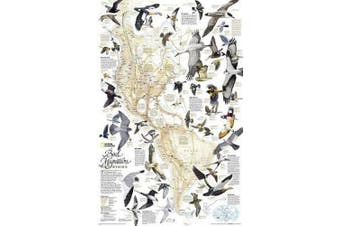 National Geographic: Bird Migration, Western Hemisphere Wall Map (20.25 X 31.25 Inches)