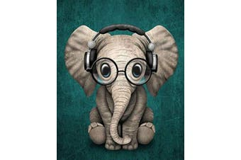(Wooden Framed, Elephant 1) - ABEUTY DIY Paint by Numbers for Adults Beginner - Elephant with Glasses Animal 41cm x 50cm Number Painting Anti Stress Toys (Wooden Framed)