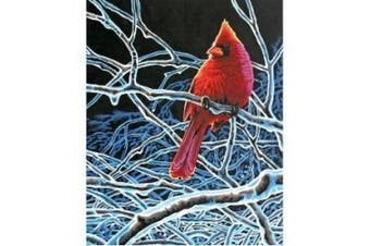 (1, Ice Cardinal) - Dimensions 447752 Paint By Number Kit 11 in. x 14 in. -Ice Cardinal