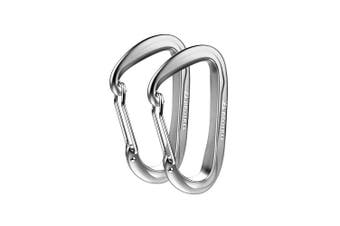 (2 A-WireGate Silver) - Brotree Carabiner D-Ring Wire Gate/Locking Carabiner Clip Hook for Hammock, Camping, Hiking, Fishing, and More