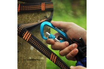 (4 Locking Black2&Blue2) - Brotree Carabiner D-Ring Wire Gate/Locking Carabiner Clip Hook for Hammock, Camping, Hiking, Fishing, and More