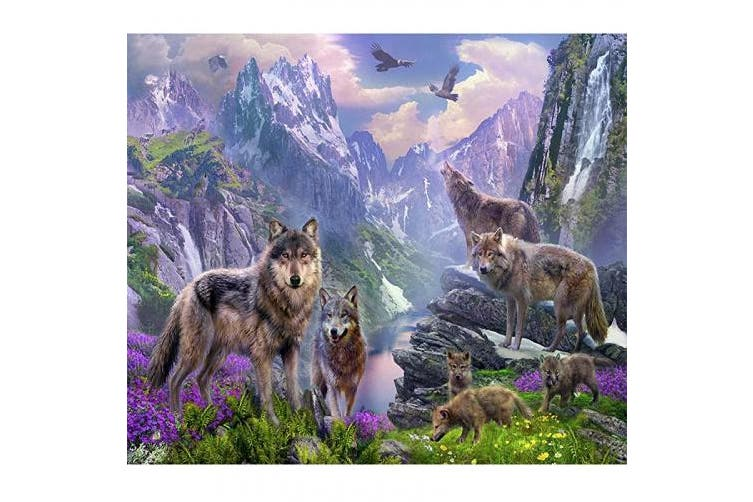 (30cm  x 41cm , Wolf) - Blxecky 5D DIY Diamond Painting By Number Kits,Wolf(40X30CM/16X12inch)