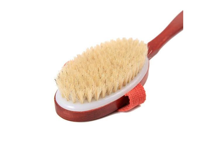 (41cm , Detachable) - Tradition Craft Dry Skin Brushing Body Brush with Long Handle 41cm for Bath Exfoliator,Shower-Natural Plant Bristle, Detachable Handle Beech Wood-Remove Dead Skin Body Scrubber Pouch & Hook Include