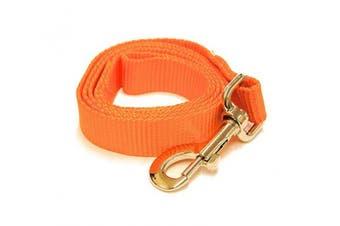 (1.2m-Long x 1.9cm  Wide, Vivid Orange) - Vivid Orange 1.2m Long (1.9cm width) Premium Pet Leash by Collar Galaxy