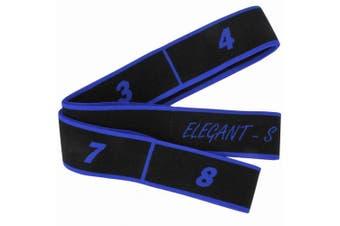 (Blue 80CM) - DingCheng Resistance Latin Bands, Elastic Bands Expander Pilates Yoga Stretch Bands Gymnastics Workout Exercise Bands 15KG For Fitness Crossfit Dance Training Workout.