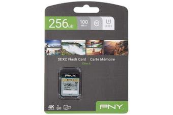 PNY Elite-X SDXC card 256GB Class 10 UHS-I U3 100MB/s