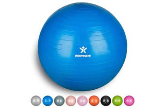 (75 cm (for body size 176-185cm), Blue) - BODYMATE Exercise Ball - E-book with extensive exercise guides included - Swiss balls gym-quality for fitness birthing pregnancy - Air pump included - Anti-Burst ball chair sizes
