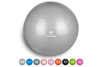 (65 cm (for body size 155-175cm), Silver) - BODYMATE Exercise Ball - E-book with extensive exercise guides included - Swiss balls gym-quality for fitness birthing pregnancy - Air pump included - Anti-Burst ball chair sizes