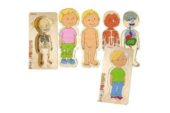 Discover Your Body Puzzles