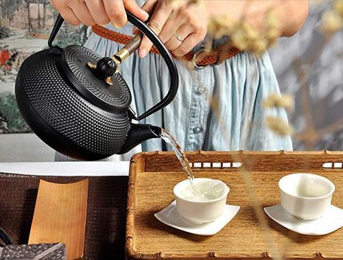 Hwagui Cast Iron Tea Pots with Infuser Tetsubin Teapot Stove Kettle for Green Tea or Tea Bags 600ml