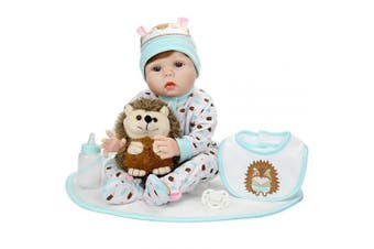 Aori Lifelike Realistic Reborn Baby Doll 60cm Real Looking Weighted Reborn Boy Doll with Hedgehog Toy Best Birthday Set for Girls Age 3