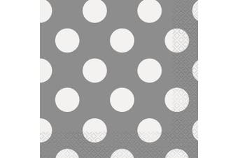 17cm Silver Polka Dot Paper Napkins, Pack of 16