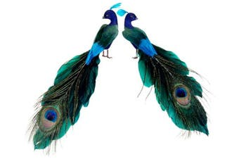 Set of 2 Regal Peacock Colourful Closed-Tail Bird Christmas Ornaments
