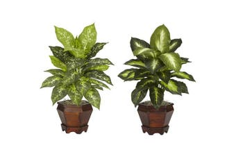 Nearly Natural 6712-S2-AS Dieffenbachia with Wood Vase Silk Plant -Set of 2
