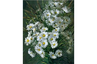 (Wooden Framed, Daisy) - ABEUTY DIY Paint by Numbers for Adults Beginner - Daisy Potted Plants 41cm x 50cm Number Painting Anti Stress Toys (Wooden Framed)