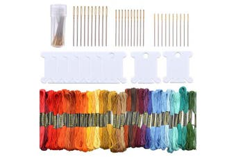 Embroidery Floss Set, 50 Skeins Rainbow Colour Cross Stitch Threads Friendship Bracelets Floss with 20pcs Floss Bobbins and 30pcs 3 Sizes Embroidery Hand Needles with Clear Bottle