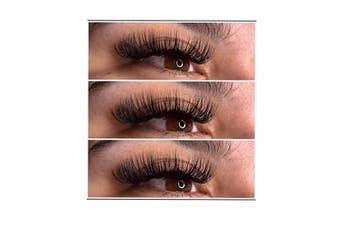 Volume Lash Extensions 4D/6D/8D/10D Premade Fans Eyelash Extensions C/D Curl 13/15/8~14mm Mixed Tray Cluster Volume Lashes by FADLASH (6D-0.10-D13)