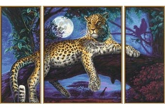 Schipper - Painting by Number - Predator in Night (Triptych)