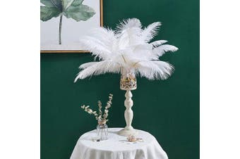 (14-16 inches (35-40cm), White) - Real Natural Ostrich Feathers Great Decorations for Home Party Wedding Centrepieces (White, 14-16 inches (35-40cm))