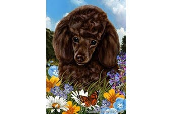 Poodle Chocolate - Best of Breed Summer Flowers Garden Flags