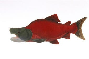 West End Sockeye Salmon Cabin Critter 43cm ,Red