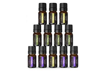(Popular Top 3) - Anjou Essential Oils Set (12x 5mL Oils, Lavender, Tea Tree and Peppermint), 100% Pure of The Highest Therapeutic Grade Quality - Premium Gift Set - Top 3 Popular Scents Oil Blends