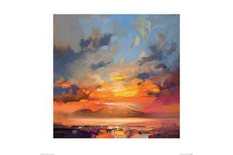 (60 x 60 x 1.3 cm) - Art Group The Scott Naismith (Rum Light Study) -Art Print 60 x 60cm, Paper, Multicoloured, 60 x 60 x 1.3 cm
