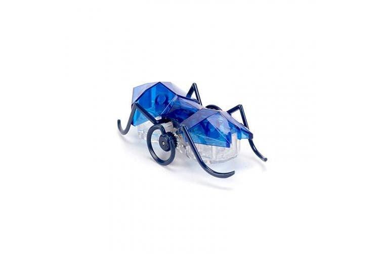 HEXBUG Micro Ant, Electronic Autonomous Robotic Pet, Ages 8 and Up (Random Colour)