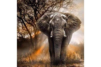 (30*30, Dusk Elephant) - Diamond Painting Kits for Adults Kids, 5D DIY Dusk Elephant Diamond Art Accessories with Round Full Drill Dotz for Home Wall Decor - 11.8×30cm